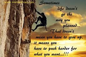 Quotes that bring happiness: Sometime life doesn't go the way you planned that doesn't mean you have to give up; it means you have to push harder for what you want.