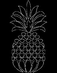 Transparent Pineapple Silhouette