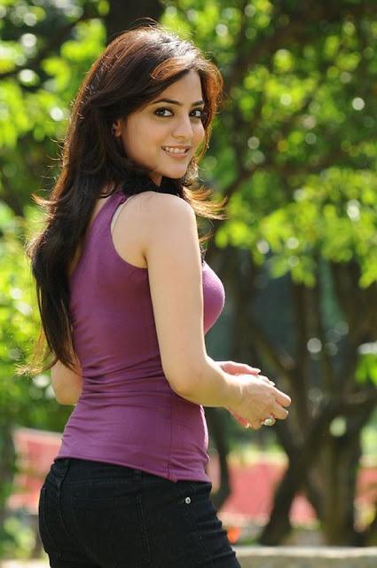 Heroine Walls: Nisha Agarwal Hot Stills