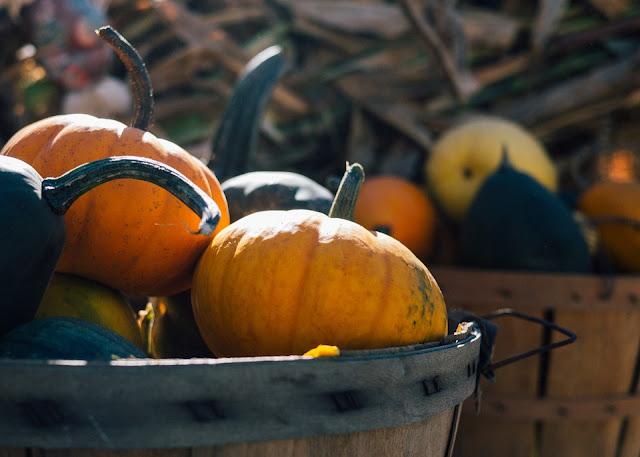Ideen Oktober, demenz, seniorenarbeit, Feiertage im Oktober, Aktionstage Oktober, Gedenkttage
