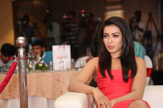 Actress Catherine Tresa Unveils Intex Air Conditioners  0337.jpg