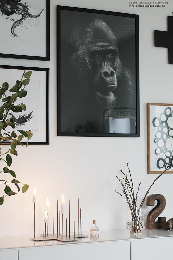 gorilla, tavla, tavlor, poster, tavelvägg, fotokonst, apa, bläckfisk, stockholm, annelies design, webbutik, kaktus, mr wattsson, lampa, lampor, skänk, byrå, skåp, postervägg, svartvit, svartvita, svart och vitt, inredning, dekoration, vako, smaelta, vaser, vas