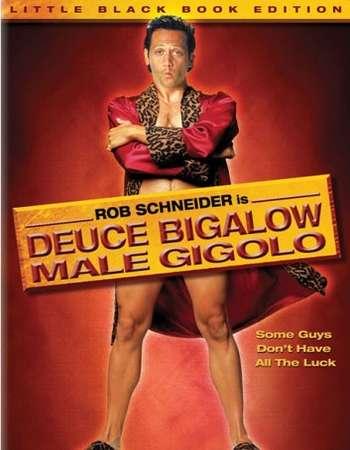 Poster Of Deuce Bigalow Male Gigolo 1999 Dual Audio 720p Web-DL [Hindi - English] ESubs Free Download Watch Online Worldfree4u