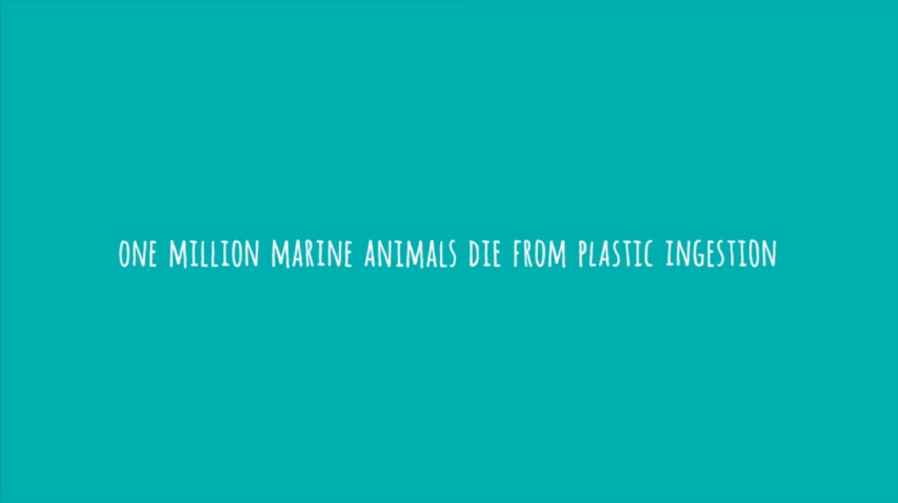 Pollutoys Sea Shepherd