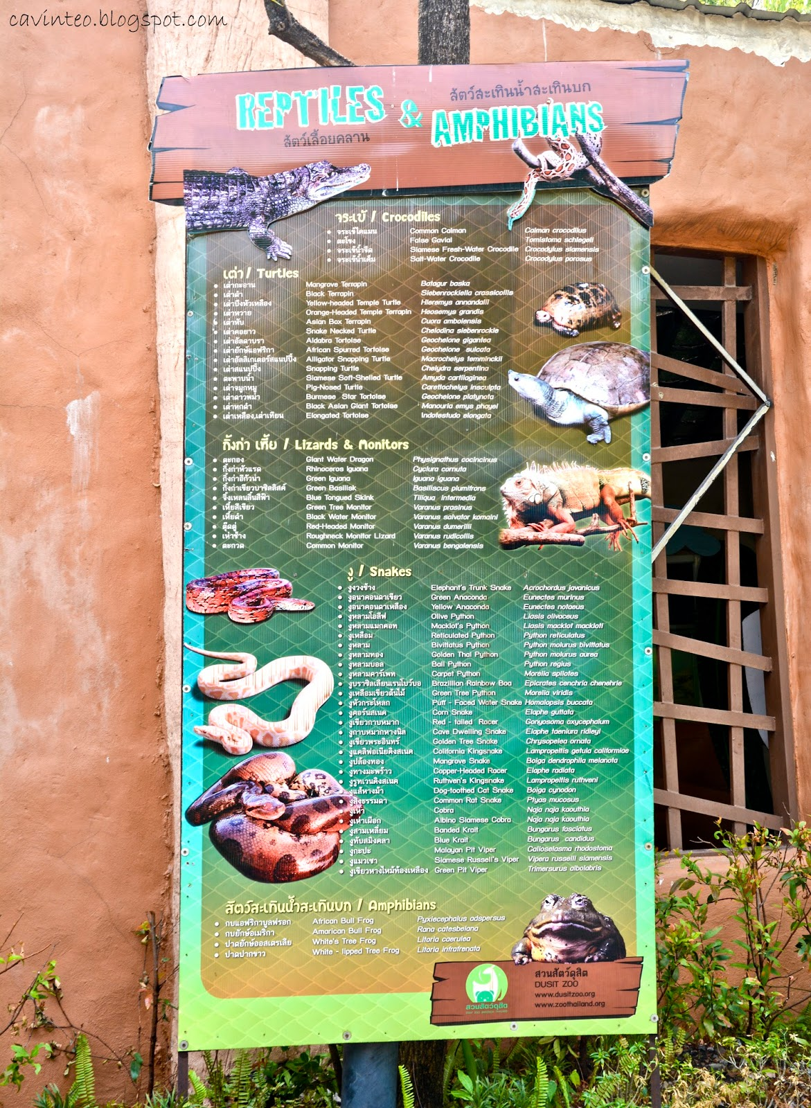 Entree Kibbles Reptile Terrarium House Dusit Zoo Bangkok