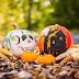 Tips para Halloween y Día de Muertos si tienes hijos con Diabetes