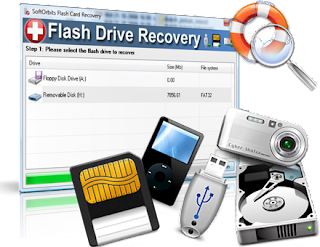 SoftOrbits Flash Drive Recovery 3.1 lizenz