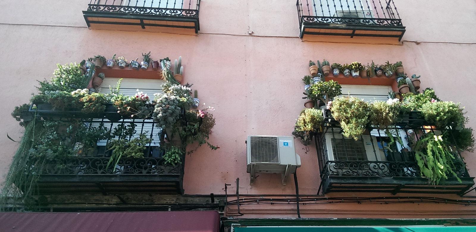 En Antón Martín, Madrid, octubre 2016