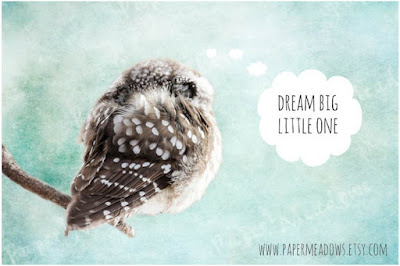 Nursery Owl Woodland  Animal Wall Art. Dream Big Little One.  You can purchase and download our photography creations and instantly print at home from our Paper Meadows Photography Shop on ETSY. To Visit our shop now click here.