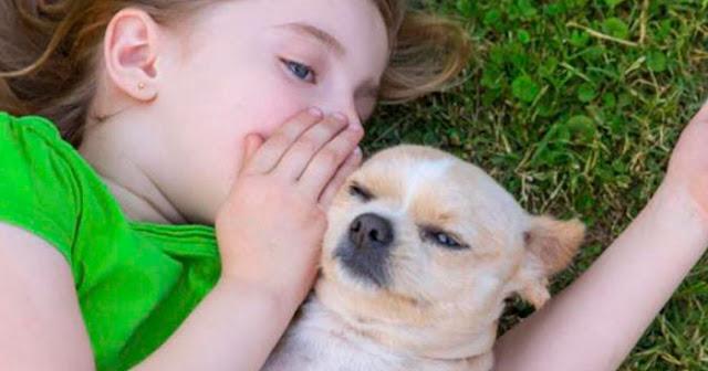 Las personas que hablan con sus perros no son lunáticos, son, científicamente, más inteligentes que la media