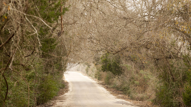 Austin to Houston Road Trip: Old Potato Road near Paige, Texas
