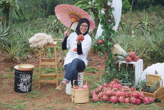 kebun buah naga dompet dhuafa