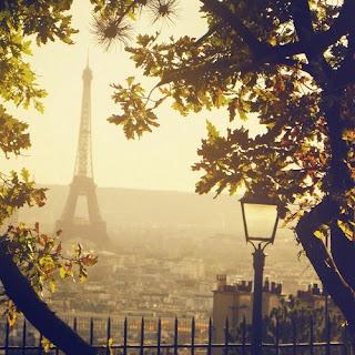 Vistas a la Torre Eiffel desde un parque