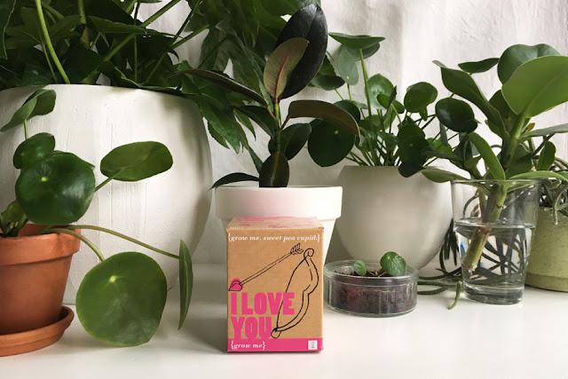 grow me zeg het met planten