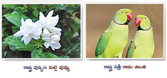 రాష్ట్ర చిహ్నాలు | State icons | GRANTHANIDHI | MOHANPUBLICATIONS | bhaktibooks