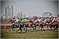 Indian Derby Picture Mahalaxmi Race Course Mumbai