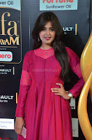 Monal Gajjar in Maroon Gown Stunning Cute Beauty at IIFA Utsavam Awards 2017 012.JPG