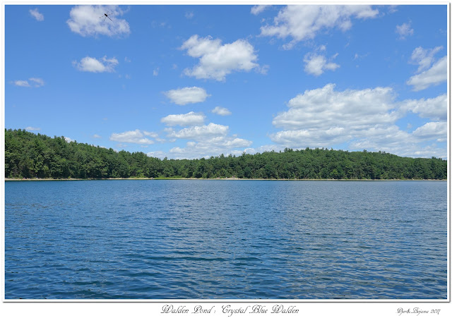 Walden Pond: Crystal Blue Walden