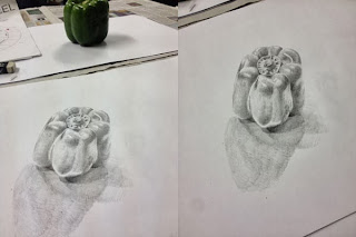 A pencil sketch of a green pepper.