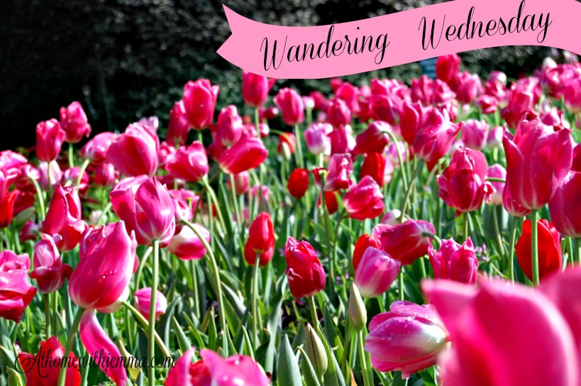 garden-dallas-arboretum-tour-spring-athomewithjemma