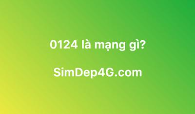 0124 là mạng gì?