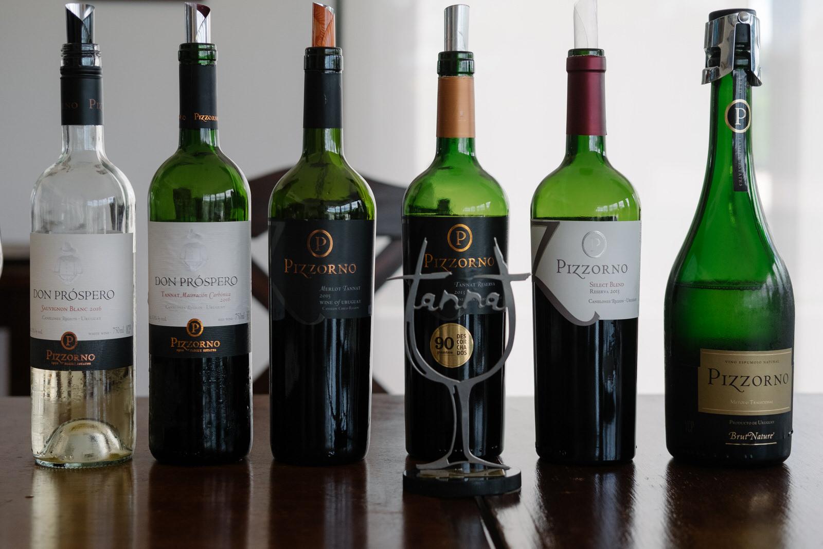Conhecendo a vinicola Pizzorno no Uruguai