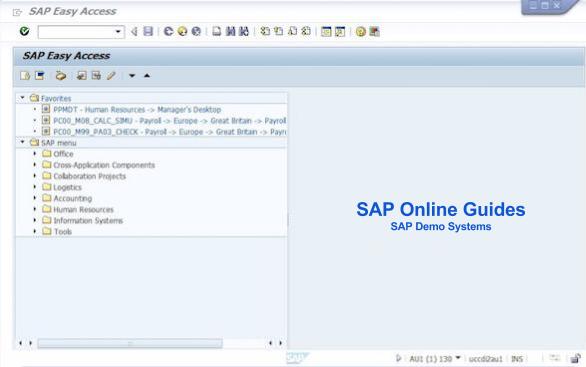 SAP Logging onto SAP System   SAP Online Guides