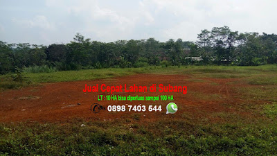 Jual Cepat Lahan Tanah di Subang