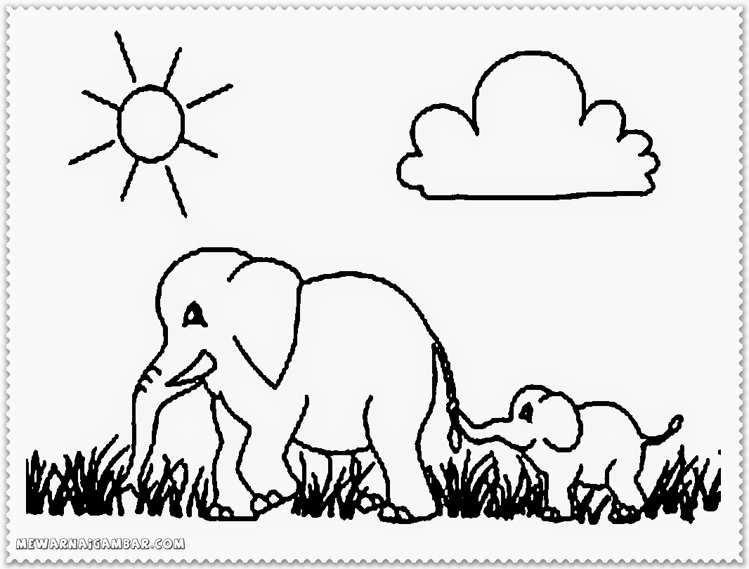 Elephant Coloring Pages National Geographic
