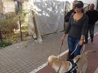 Η Διασυνό κάνει βόλτα με σκύλο οηγό