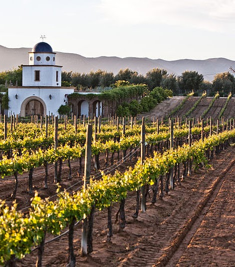 best wine destinations in mexico