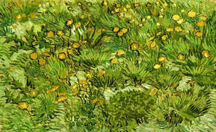 Hierba Mariposas Y Primavera Con Van Gogh