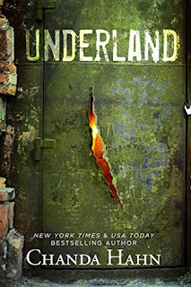 Fantasy novel Underland by Chanda Hahn!