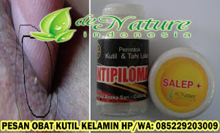 Salep Kutil Kelamin
