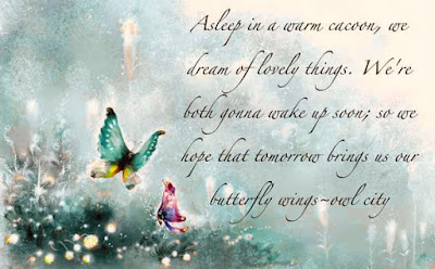 Butterflies Quotes