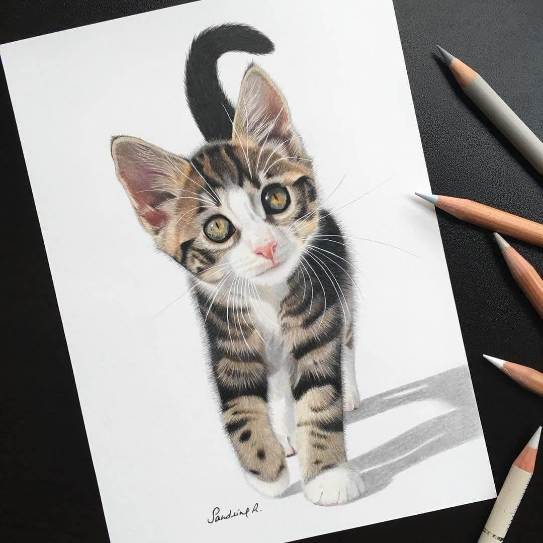 09-Pickles-the-kitten-Sandrine-R-Sweet-Realistic-Animal-Portrait-Drawings-www-designstack-co