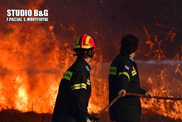 Έκτακτα μέτρα στην Αργολίδα λόγω πολύ υψηλού κινδύνου πυρκαγιάς