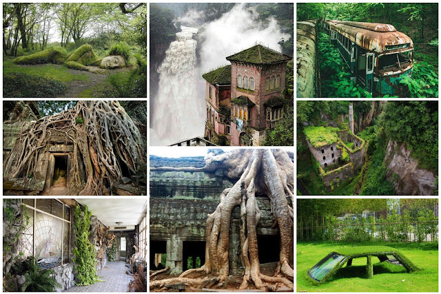 25 Times Nature Turned Abandoned Places Into Surreal Masterpieces