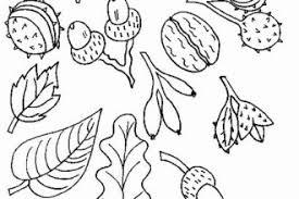 Malvorlagen Herbstblätter X Claudia Schiffer