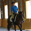 Dressage Clinic with Ulla Parker