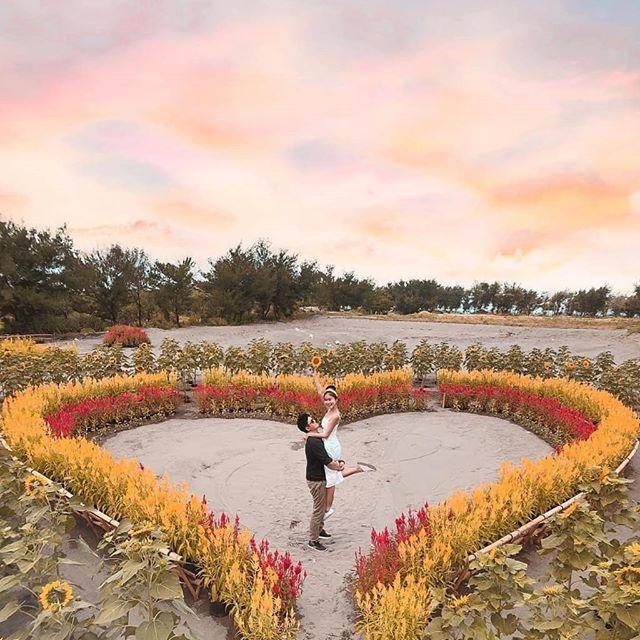 Taman bunga gumuk pasir Bantul Yogyakarta