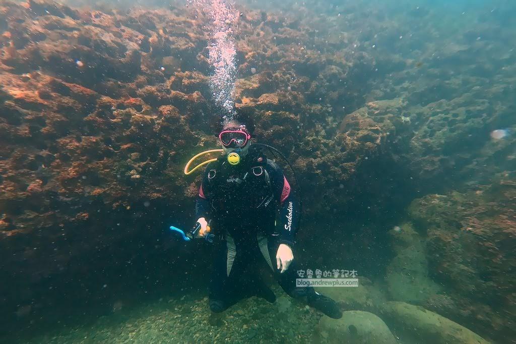 龍洞四季灣潛水,東北角潛潛,東北角體驗潛水