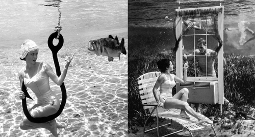 00-Bruce-Mozert-The-Birth-of-Underwater-Photography-and-Filming-www-designstack-co