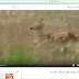 خاصية المشاهدة لاحقا لمقاطع الفيديو على اليوتيوب