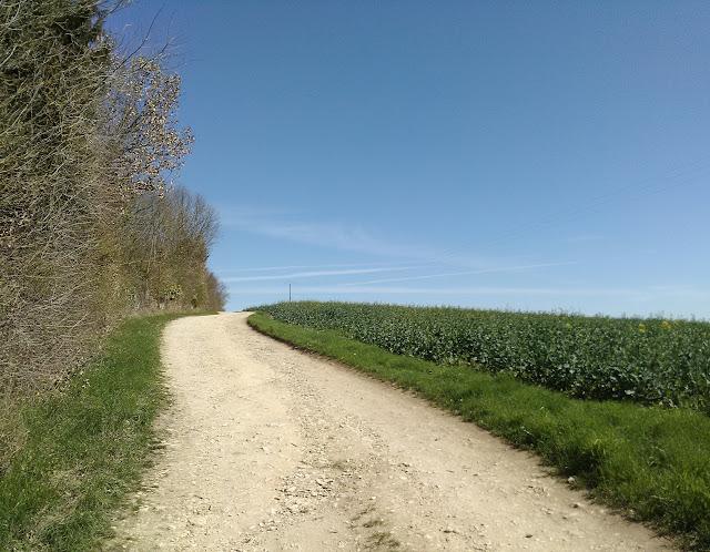 chemin, campagne méditation