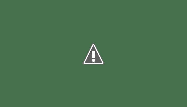 Google Chrome 57 va empêcher de modifier et désinstaller les plugins
