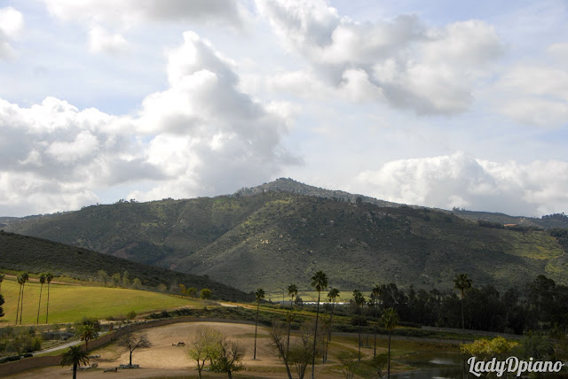 Starvation Mountain in the San Pasqual Valley: LadyD Books