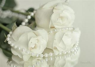 Fehér rózsa jelentése