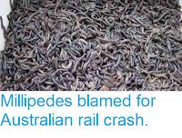 http://sciencythoughts.blogspot.co.uk/2013/09/millipedes-blamed-for-australian-rail.html