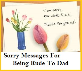 Sorry Messages Dad